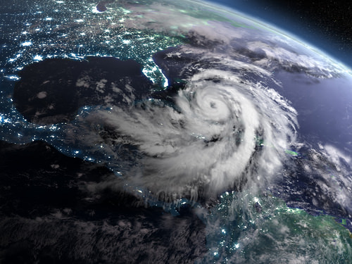 Typhoon enhances the production of bacteria and phytoplankton