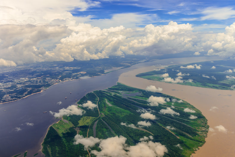 The Amazon River: High fish abundance in the confluence of two large rivers